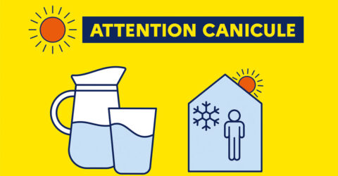 illustration : attention canicule